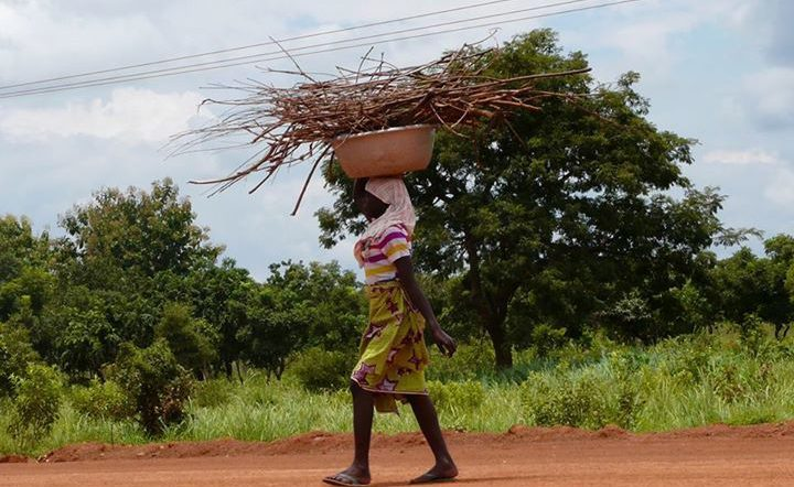Gender Equality and Food Rights