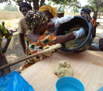 Employment and Income Level Elevation Through Livelihood Diversification